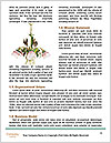 0000086473 Word Templates - Page 4