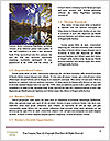 0000086481 Word Template - Page 4