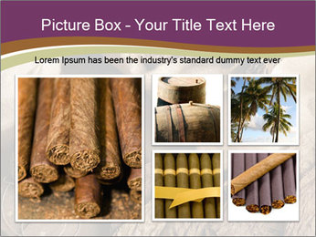 0000086504 PowerPoint Templates - Slide 19
