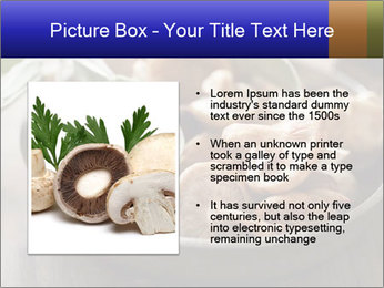 0000086510 PowerPoint Template - Slide 13