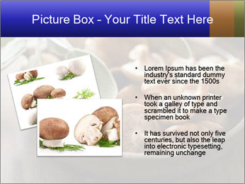 0000086510 PowerPoint Template - Slide 20