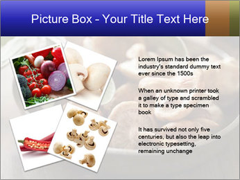 0000086510 PowerPoint Template - Slide 23