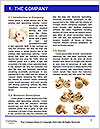0000086510 Word Templates - Page 3