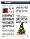 0000086512 Word Template - Page 3