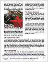 0000086512 Word Template - Page 4