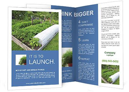 0000086513 Brochure Template