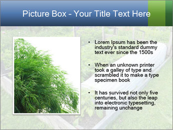 0000086513 PowerPoint Templates - Slide 13
