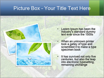 0000086513 PowerPoint Template - Slide 20