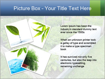 0000086513 PowerPoint Templates - Slide 23