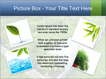 0000086513 PowerPoint Templates - Slide 24