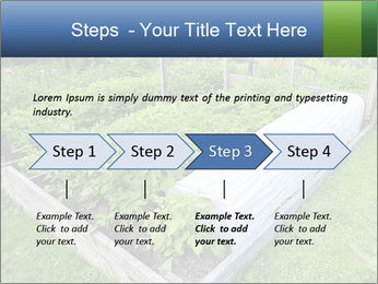 0000086513 PowerPoint Templates - Slide 4