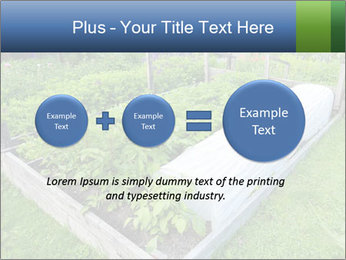 0000086513 PowerPoint Template - Slide 75