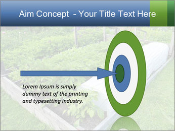 0000086513 PowerPoint Template - Slide 83