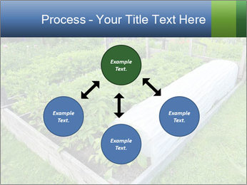 0000086513 PowerPoint Templates - Slide 91