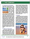 0000086515 Word Template - Page 3