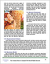 0000086515 Word Template - Page 4