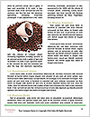 0000086522 Word Templates - Page 4