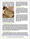 0000086524 Word Templates - Page 4