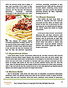 0000086526 Word Template - Page 4