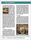 0000086530 Word Template - Page 3