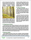 0000086532 Word Templates - Page 4