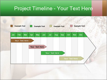 0000086537 PowerPoint Template - Slide 25