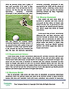 0000086546 Word Template - Page 4
