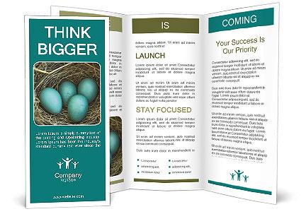 0000086557 Brochure Templates