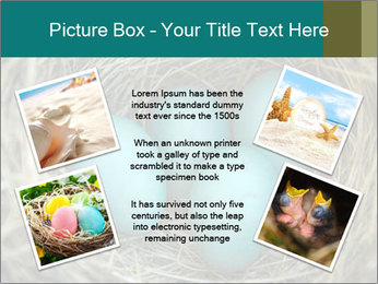 0000086557 PowerPoint Templates - Slide 24