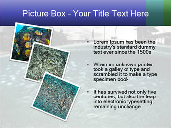 0000086573 PowerPoint Templates - Slide 17