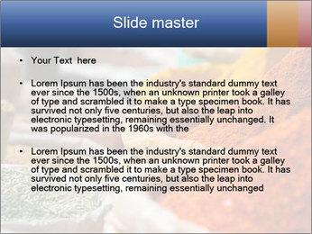 0000086594 PowerPoint Templates - Slide 2