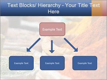 0000086594 PowerPoint Templates - Slide 69