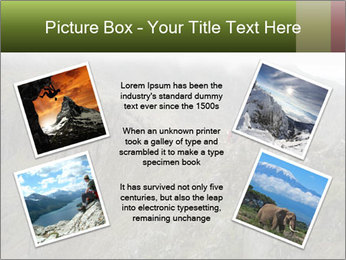 0000086606 PowerPoint Templates - Slide 24