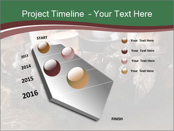 0000086611 PowerPoint Template - Slide 26