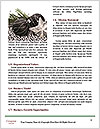 0000086611 Word Template - Page 4