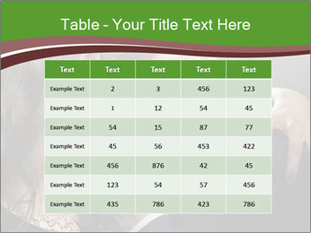 0000086632 PowerPoint Template - Slide 55