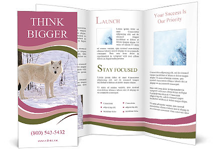0000086635 Brochure Templates