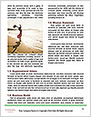 0000086644 Word Template - Page 4