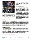 0000086652 Word Templates - Page 4