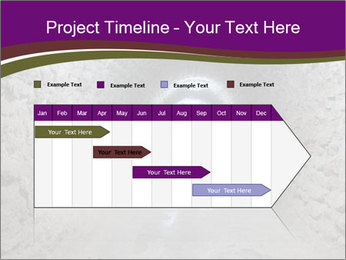 0000086667 PowerPoint Templates - Slide 25