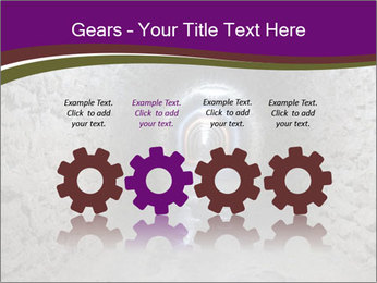 0000086667 PowerPoint Templates - Slide 48