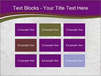 0000086667 PowerPoint Templates - Slide 68