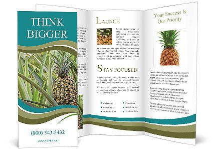 0000086670 Brochure Templates