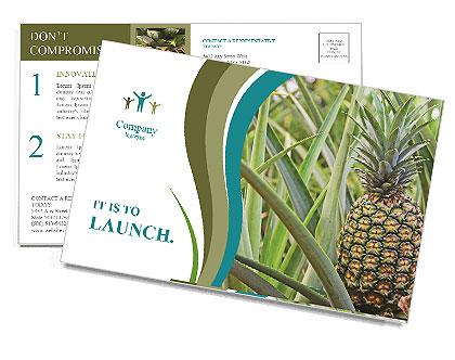0000086670 Postcard Template