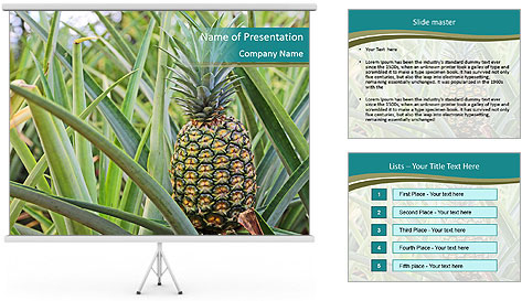 0000086670 PowerPoint Template