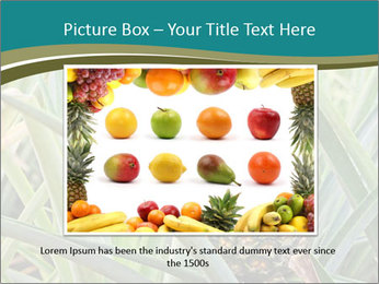 0000086670 PowerPoint Template - Slide 15