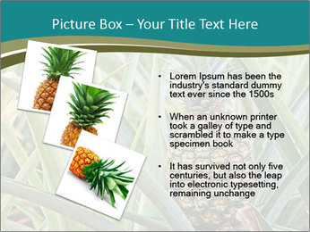 0000086670 PowerPoint Template - Slide 17