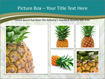 0000086670 PowerPoint Template - Slide 19