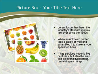 0000086670 PowerPoint Template - Slide 20