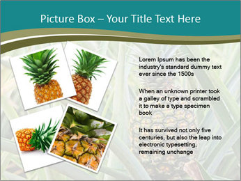 0000086670 PowerPoint Template - Slide 23